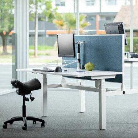 Back to Back Standing Desk