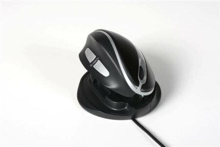 Styrdon Oyster Mouse