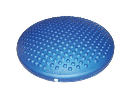 Disc' O' Sit Cushion