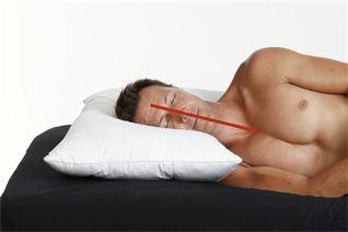 Eclipse Natural Comfort Pillows